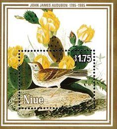 Vesper Sparrow (Poecetes gramineus)