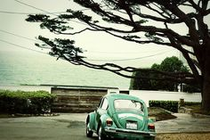 punch buggy.