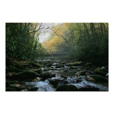 >>>Low Price Guarantee          Smoky Mountains Poster           Smoky Mountains Poster This site is will advise you where to buyShopping          Smoky Mountains Poster lowest price Fast Shipping and save your money Now!!...Cleck Hot Deals >>> http://www.zazzle.com/smoky_mountains_poster-228891853321903665?rf=238627982471231924&zbar=1&tc=terrest
