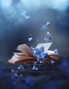 Little stories - Ashraful Arefin on Fstoppers