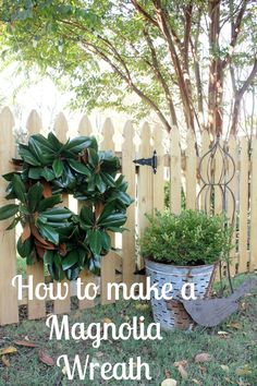 How to Make a Magnol