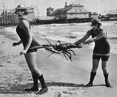 bathing beauties 1920