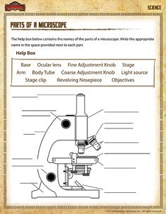 Parts of a Microscope View – Free 5th Grade Science Worksheet  Check out www.NYHomeschool.com as well.