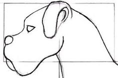 Resultado de imagem para como desenhar animal
