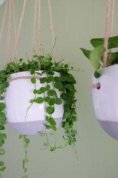 hangplant hangplantenpot #plantsmakemehappy #indoorjungle #houseplantclub #plantnerd #plantmom #crazyplantlady #plantsarefriends #plantgang #plantsarecool #greenery #plantsinfocus #greenyourfeed