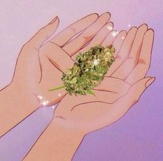 kush weed cannabis nugs bud marijuana maryjane dank inweedwetrust weedsnob weedhumor weedsociety cannababes stonerchicks redeyes itslit stupidlit h dabs wax honey sauce torch mylungshurt stonerhumor cannapeople Arte Dope, Dope Art, Bad Girl Aesthetic, Pink Aesthetic, Fille Gangsta, Medical Marijuana, Stoner Art, Stoner Girl, Smoke Weed