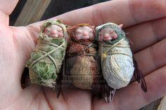 Baby faerie triplets! by AlvaroFuegoFatuo