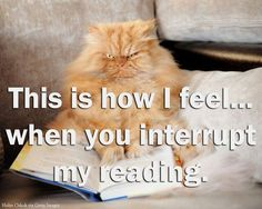 Reading interrupted