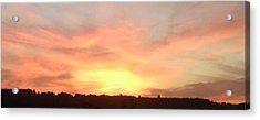 Bright Sunset On Ranmore Close Up Acrylic Print by Julia Woodman