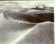 Ansel Adams, Dunes, Death Valley, 1938.