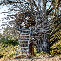 Shedworking: Twigitecture