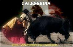 Caleserina