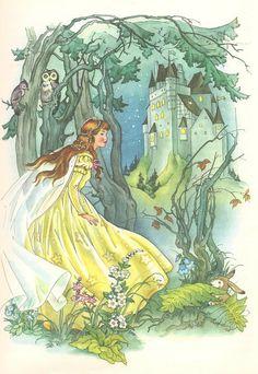 Kuhn  Cinderella