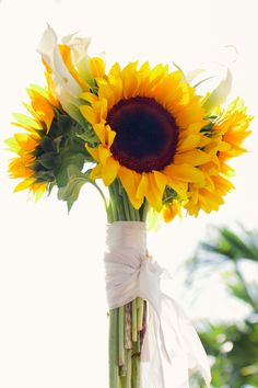 ♡ Sunflower hand-tied #wedding #Bouquet ... For wedding ideas, plus how to organise an entire wedding, within any budget ... https://itunes.apple.com/us/app/the-gold-wedding-planner/id498112599?ls=1=8 ♥ THE GOLD WEDDING PLANNER iPhone App ♥  For more wedding inspiration http://pinterest.com/groomsandbrides/boards/ photo pinned with love & light, to help you plan your wedding easily ♡