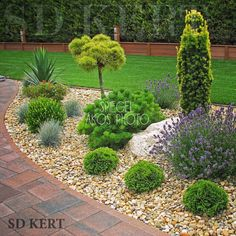Precious Tips for Outdoor Gardens - Modern Back Gardens, Outdoor Gardens, Evergreen Garden, Garden Landscape Design, Front Yard Landscaping, Landscaping Design, Garden Styles, Dream Garden, Garden Planning