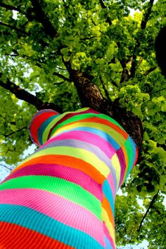 Todi: urban knitting 2014