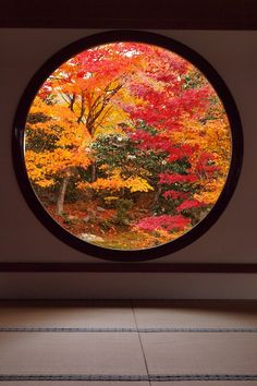 low circular window requiring viewer to kneel to fully appreciate and respect nature, Japan Japanese Interior, Japanese Design, Japanese Style House, Japan Architecture, Autumn Scenery, Photos Voyages, Japanese Culture, Garden Design, Beautiful