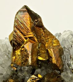 Chalcopyrite with Quartz - Peru / Mineral Friends <3