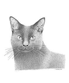 Original Drawing Original Art Ink Illustration Grey by caitlihne, $25.00