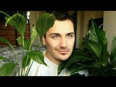 How to Make Peace Lily in Vase How to Plant Peace Lily in white vase flower vlog gay Vlog, Youtube, Plant Leaves, Plants, Peace Lily, White Flowers, Plant, Youtubers, Youtube Movies