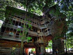 A maior casa na árvore do mundo foi construída por Horace Burgess em Crossville, Tennessee