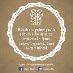 #SabíasQué cada mes del año es perfecto para regalar una nueva sonrisa en el #Cumpleaños de esa persona especial. Se acerca #Navidad y con ella vienen muchas fechas especiales, la Poinsettia o planta de Navidad es esa opción perfecta para encantar. #Diciembre #FelizLunes