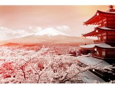 日本の美しい風景特集 の画像|毎日が日曜日 IRFG代表取締役会長 荻原綾オフィシャルブログ