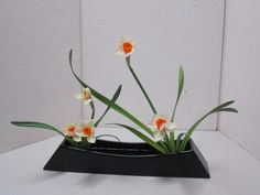 http://anjouikebana.files.wordpress.com/2013/01/freestyle-ldias.jpg