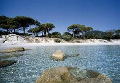 Camping Frankreich - top 10 beaches in France. Palombaggia (number is the one of the most beauti. Corsica, The Places Youll Go, Places To See, Normandy Beach, Ville France, Camping Lights, South Of France, France Travel, Vacation Spots