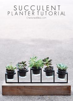 DIY Succulent Planter Tutorial candle holders, diy succulent planter, succul planter, planter tutori, candl holder