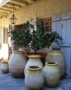 Eye For Design: Decorating With French Biot Jars