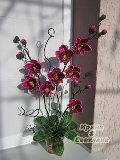 "Орхидея ""Миледи"" | biser.info - всё о бисере и бисерном творчестве"