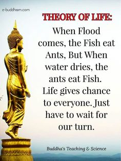 42 Gautama Buddha Quotes on Life and Peace Buddhist Quotes, Spiritual Quotes, Wisdom Quotes, Life Quotes, Mooji Quotes, Spiritual Meditation, Buddha Quotes Inspirational, Motivational Quotes, Positive Quotes