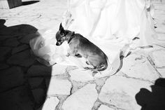These Artistic Sicilian Wedding Photos Are Unlike Others Youve Seen