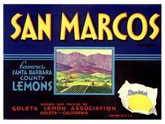 San Marcos California Lemon Crate Label by VintageBargainsCo