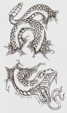 ideas tattoo snake arm deviantart for 2019 - ideas tattoo snake . - ideas tattoo snake arm deviantart for 2019 – ideas tattoo snake arm deviantart for 2019 # - Tattoo Design Drawings, Cool Art Drawings, Pencil Art Drawings, Art Drawings Sketches, Tattoo Sketches, Tattoo Designs, Drawings Of Snakes, Tattoo Ideas, Skull Tattoo Design