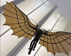 Leonardo Da Vinci's hang glider invention inspired by bats' wings