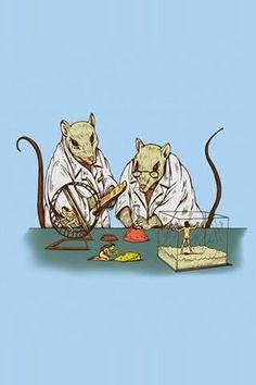Lab Rats!