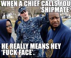 When a Chief calls you 'shipmate', he really means hey 'fuck face'. Navy Jokes, Navy Humor, Master Chief Navy, Us Navy Uniforms, Navy Chief Petty Officer, Military Jokes, Navy Corpsman, Navy Day, Navy Girlfriend