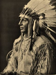 White Shield (aka Harry Gillette) - Arikara - 1908