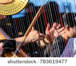 harpist symphony orchestra, playing the harp in the afternoon - stock photo