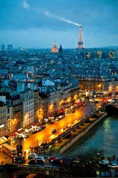 Paris , vue en hauteur au bord des quais de Seine. Où l'on voit que vue de plus près ( pont st Michel ) que sur le montage ci-dessous la tour Eiffel est plus petite