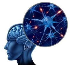 How Brain Networks Influence Eating Disorders