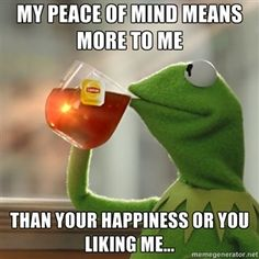 My peace of mind means more to me   than your happiness or you liking me...  | Kermit The Frog Drinking Tea