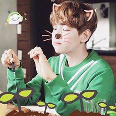 EXO Baekhyun EXO next door