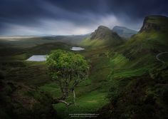"""Quiraing Ash - Famous lone Ash tree on the Quiraing. www.juanpablodemiguel.com <a href=""""http://www.juanpablodemiguel.com/Prints""""> Fine Art Prints</a> Like my <a href=""""https://www.facebook.com/demiguel.art/""""> Facebook Page</a> for more frequent updates on travels and photos, <a href=""""https://instagram.com/demiguel/"""">Instagram too</a>. ● Ey! I read ALL the comments, especially ones that offer constructive criticism!"""
