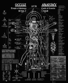 Occult Anatomy of a Man. Illustration above depicts the occult anatomy of the human body, as projected on the Vitruvian Man (originally done by Leonardo da Vinci). It unifies the Tree of Life, the Yogic Chakras, and information from Kundalini Yoga,. Alchemy Symbols, Magic Symbols, Sacred Geometry Symbols, Esoteric Art, Arte Obscura, Occult Art, Psychedelic Art, Book Of Shadows, Dark Art