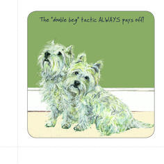 The Little Dog Double Beg Gift Card from The Little Dog Laughed. Buy The Little Dog Double Beg Gift Card at best price from Arcade Wales. Dog Lover Gifts, Dog Lovers, Dog Cards, West Highland Terrier, Animal Cards, Westies, Little Dogs, Scottie, Card Sizes