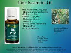 Pine Essential Oil www.motivatedfamilies.com