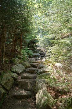 Blue Mtn Trail, Adirondacks, NY